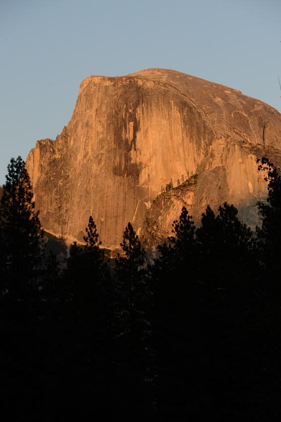 Half Dome, The Majestic, YNP.